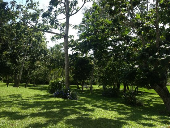 Maya: Gardens