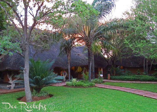 Bushman/San Village Tented Camp: Main Lodge