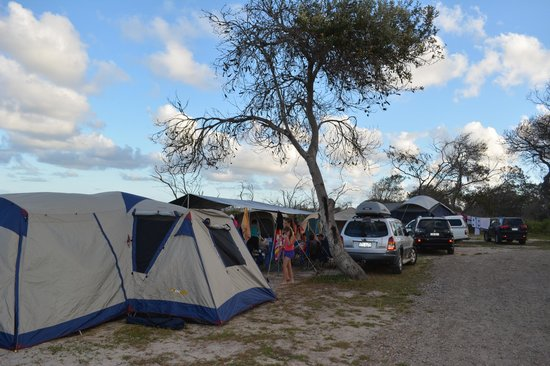 Noosa North Shore Beach Campground: Large sites for groups