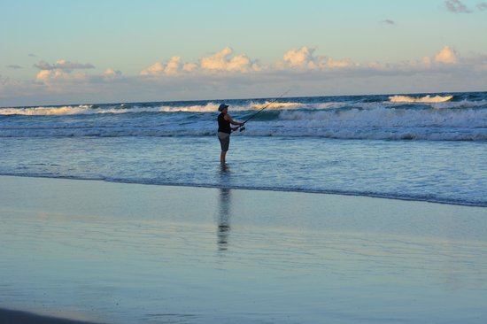 Noosa North Shore Beach Campground: Fantastic Fishing