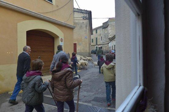 Ca Na Toneta: Fensterblick auf Dorfstraße