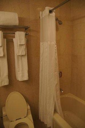 Millennium Hilton New York Downtown: Dusche