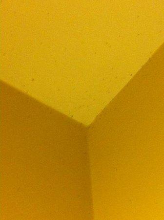 Hotel Ritz: Il soffitto è dei moscherini