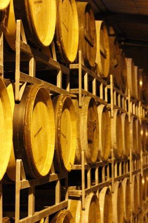 Le Cassissium : Marcs de Bourgogne