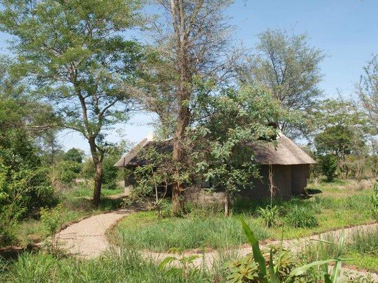 Munga Eco-Lodge : Huts/Chalets