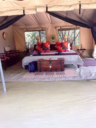 Leleshwa Camp : My tent #3
