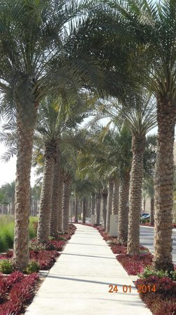 Anantara Eastern Mangroves Hotel & Spa: Walk Way
