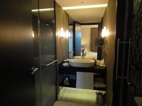 Hotel Schweizerhof Bern & THE SPA: 水周り/右手トイレ、左手シャワーブース
