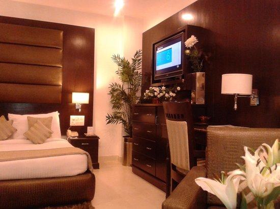 Hotel Shanti Palace (Mahipalpur): Bed & TV