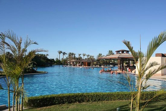 Steigenberger Al Dau Beach Hotel: piscine