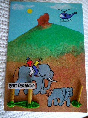 Botlierskop Private Game Reserve : Card from Botlierskop