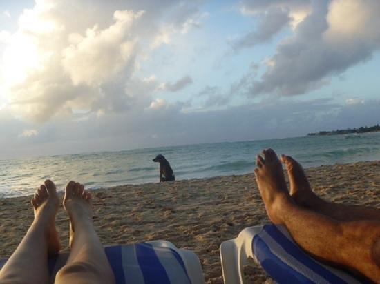 Cocoplum Beach Hotel: playa del hotel y amigos