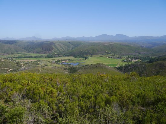 Botlierskop Private Game Reserve: view looking down to the lodge