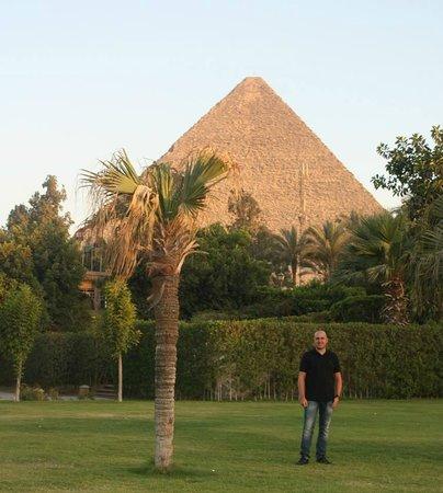 Mena House Hotel: jardin vue pyramides