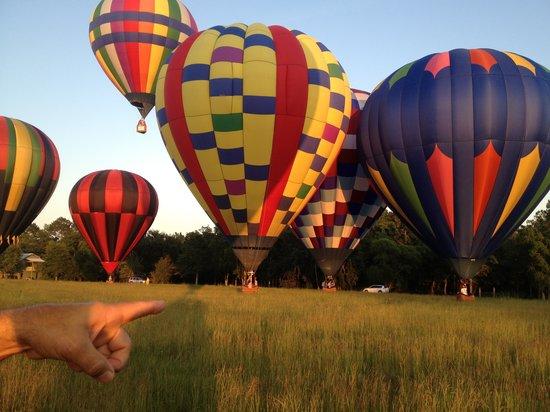 Bella Balloons Hot Air Balloon Co: Hot Air Balloons Launch
