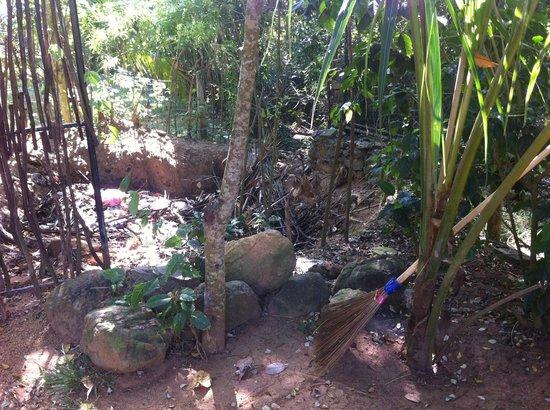 Kadju House : Déchets dans le jardin...