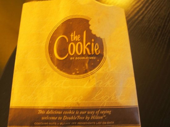 DoubleTree by Hilton Hotel Amsterdam Centraal Station: delicious cookie
