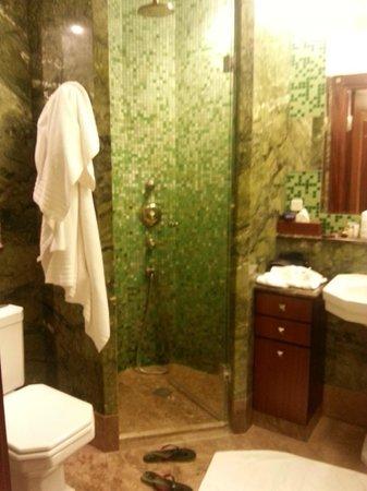 Hotel Rialto: Душ в ванной комнате