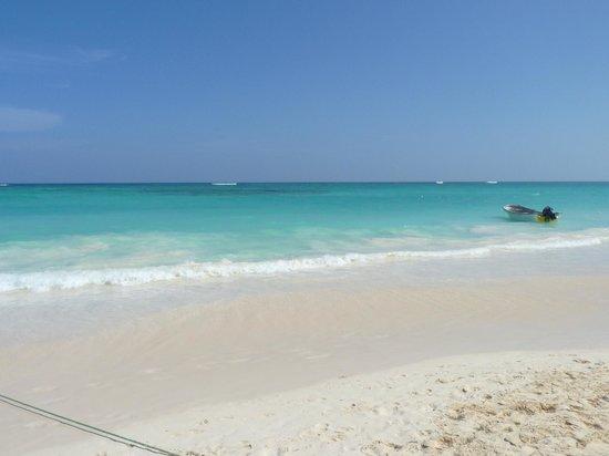 Luxury Bahia Principe Esmeralda Don Pablo Collection : beach