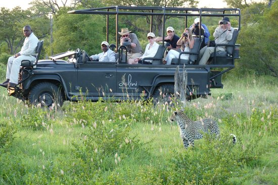 Dulini Lodge: Leopard sighting in Dulini