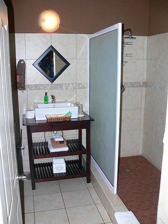 Uxolo Guesthouse Johannesburg: Bath - Baobab room