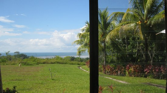 Hotel Lookout at Playa Tortuga: view from my bed in room 10