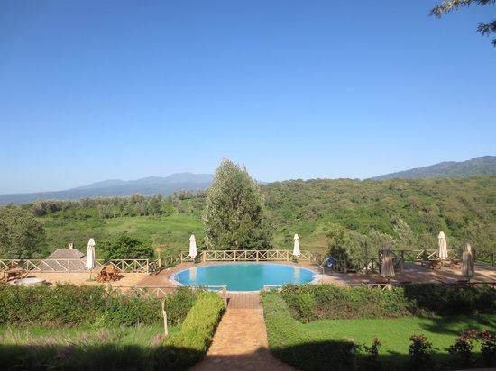 Neptune Ngorongoro Luxury Lodge : View of the pool from restaurant