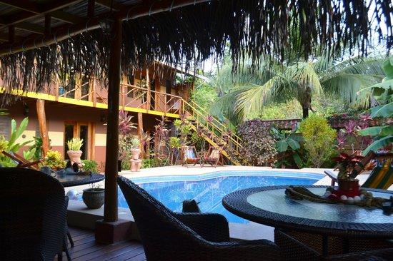 Samara Palm Lodge: pool