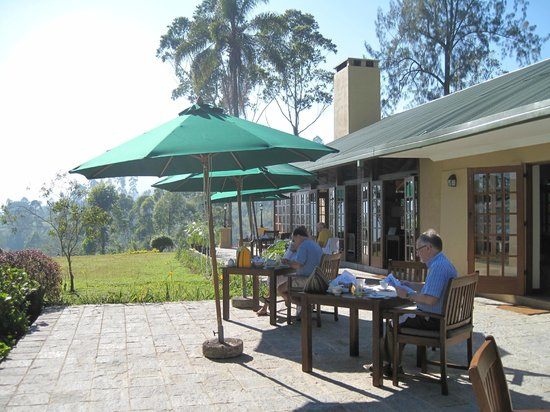 Ceylon Tea Trails: Breakfast, lunch or afternoon tea on the patio