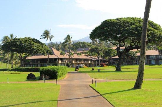 Maui Eldorado : Outrigger Maui El Dorado
