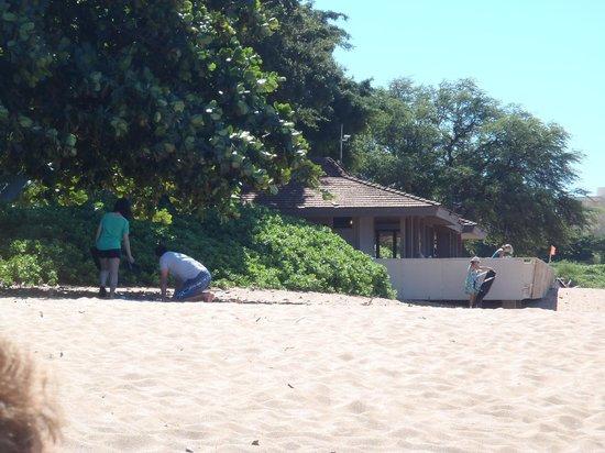 Maui Eldorado : Outrigger Maui El Dorado Beach Cabana