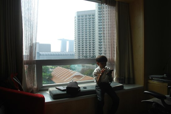 Carlton Hotel Singapore: view from premier room