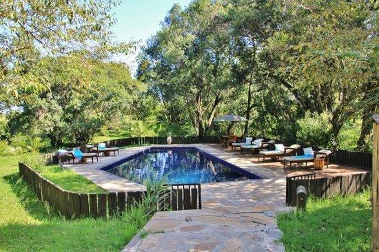 Olare Mara Kempinski Masai Mara: Pool area