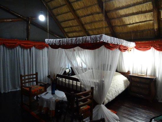 Manyara Wildlife Safari Camp: Room