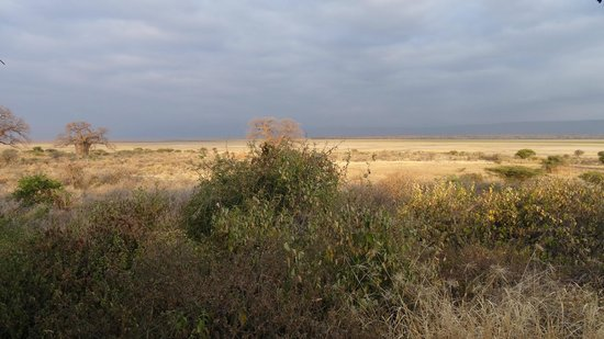 Manyara Wildlife Safari Camp: The view from our room