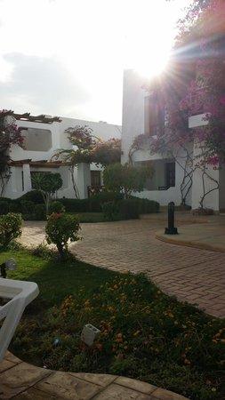 Mexicana Sharm Resort: Hotel at sunset