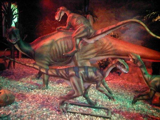 Planetarium360 & Dino Live
