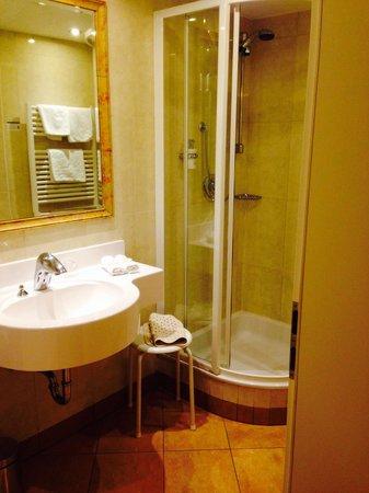 Hotel Elefant : Bathroom 1