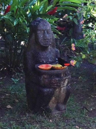 Boquete Garden Inn: Jardin