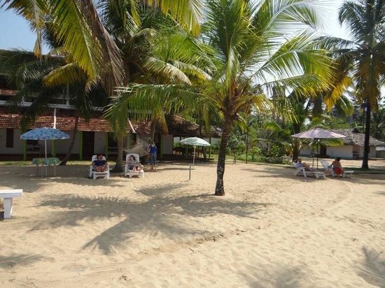 Alleppey Beach Resorts Updated 2018 Resort Reviews Price Comparison Kerala Aluzha India Tripadvisor