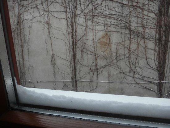 Hotel Gloria Palac : The wall view.