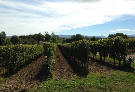 Fine Wine Tours : Domaine Gayda