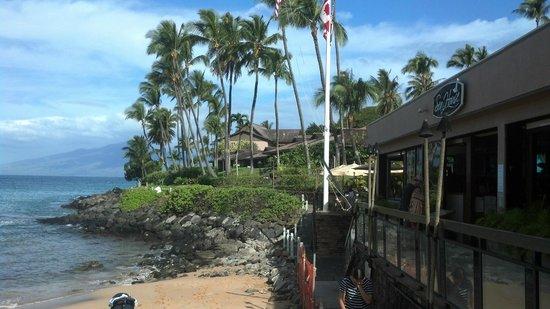 Sea House Restaurant: Sea Shack Restaurant