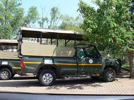Olifants Rest Camp : Safari Vehicle