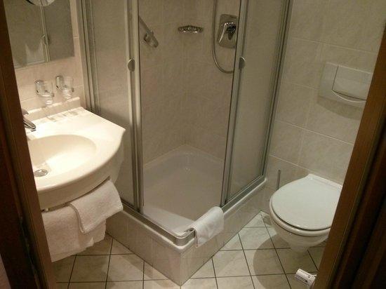Hotel Schweizer Hof: Baño