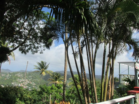 Caribelle Batik: View from the porch