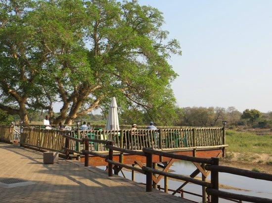 Skukuza Rest Camp : Terrasse du restaurant