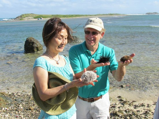 Twin Island Excursions: A stop to check out some aquatic friends