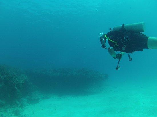Dressel Divers: Diving Riviera Maya, Mexico