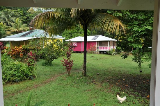 Mermaid's Secret - Riverside Retreat: The view from the Carib Cabin